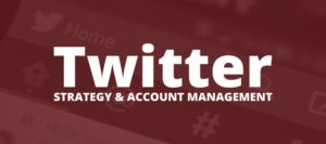 Twitter Account Management Services